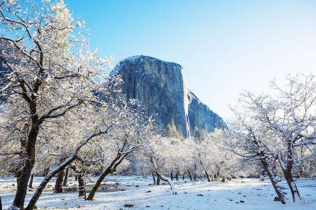 Красивые пейзажи ранней весны в национальном парке йосемити, йосемити, сша