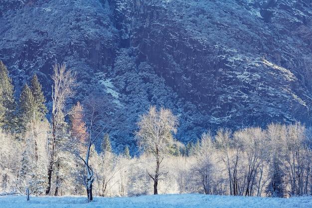 アメリカ合衆国、ヨセミテのヨセミテ国立公園の美しい早春の風景