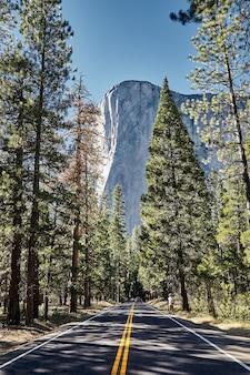 アメリカ合衆国、カリフォルニア州のヨセミテ国立公園にある美しいエルキャピタン山