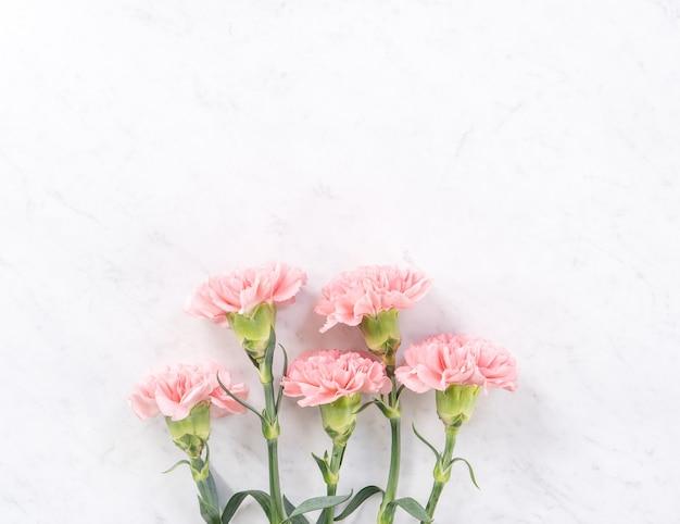 밝은 흰색 대리석 테이블 위에 아름답고 우아한 핑크 카네이션 꽃