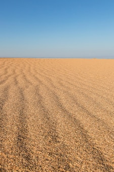 Beautiful empty sand wave beach texture. vertical.