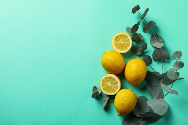 Beautiful eucalyptus branch and lemons on mint background