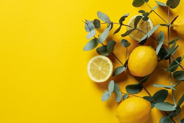 黄色の背景に美しいユーカリの枝とレモン