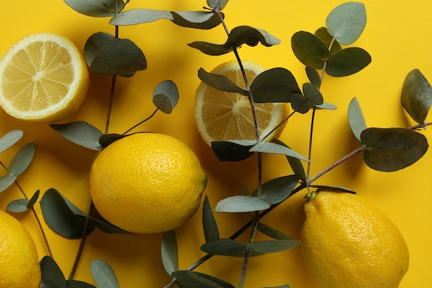 Beautiful eucalyptus branches and lemons on yellow background