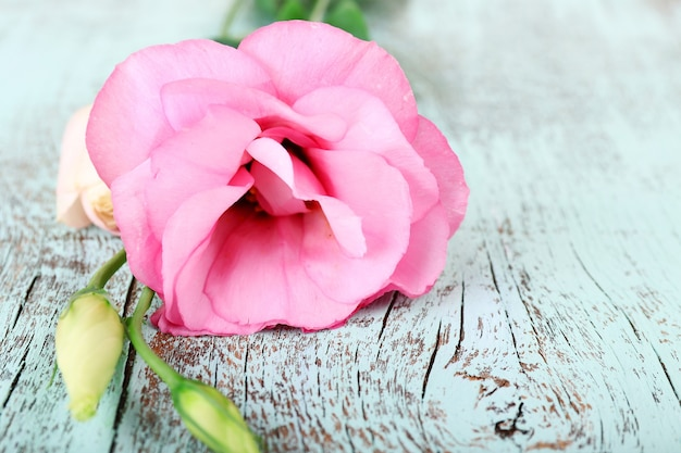 木製のテーブルの上の美しいトルコギキョウの花