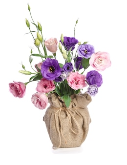 Beautiful eustoma flower with leafs and buds in flowerpot on white