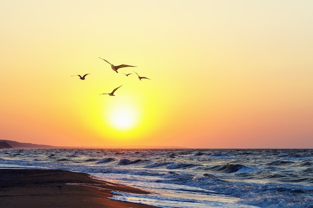 Красивый вечерний закат на море летний пейзаж