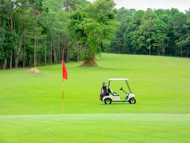 ゴルフコースの美しいフェアウェイ