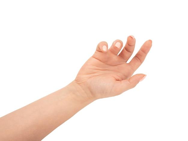 成熟した肌を持つ美しい女性の手、開いた手のひら。女性の手で持っている物のための空きスペース。開いた手のひらを上にしてリラックスした位置にある女性の手