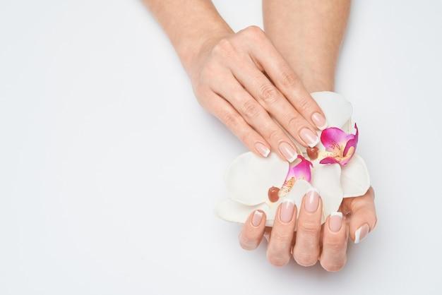 Красивые женские руки с французским маникюром на светло-серой поверхности