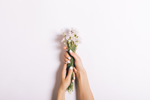Beautiful female hands with manicure hold a bouquet of small carnations on white