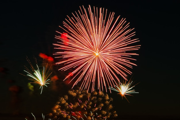 休日のための空の美しいお祭り花火。黒の背景に明るいマルチカラーの敬礼。テキストの場所。