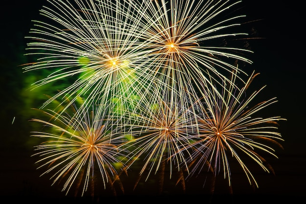 Beautiful festive fireworks in the night sky bright multicolored salute on a black background