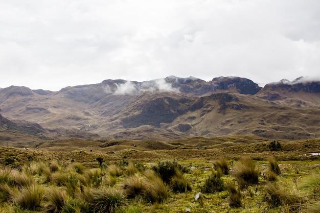 背景に素晴らしいロッキー山脈と丘と素晴らしい曇り空のある美しいフィールド