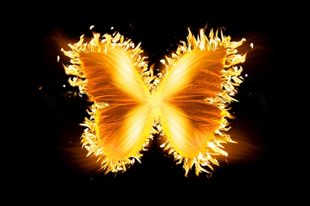 Beautiful fire butterfly isolated on black background