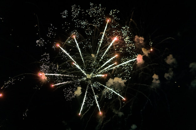 Beautiful firework display on sky at night for celebration in event
