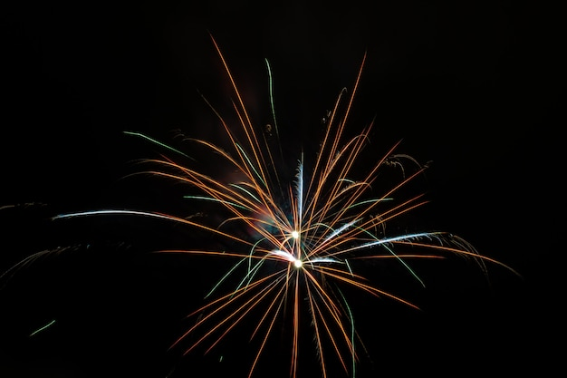 Beautiful fireworks blooming in the night sky