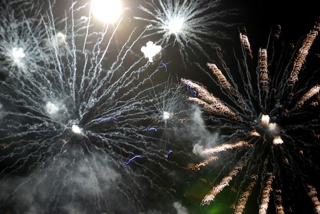 검은 하늘에 아름다운 불꽃놀이 독립 기념일에 좋은 화려한 불꽃놀이
