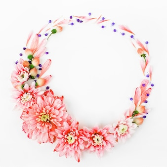 Красивые цветочные композиции. розовые хризантемы в форме круглой рамки на белом фоне. плоская планировка, вид сверху.