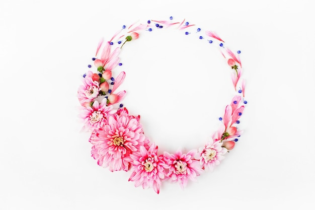 Beautiful floral arrangements. pink chrysanthemums in the shape of round frame on white background. flat lay, top view.
