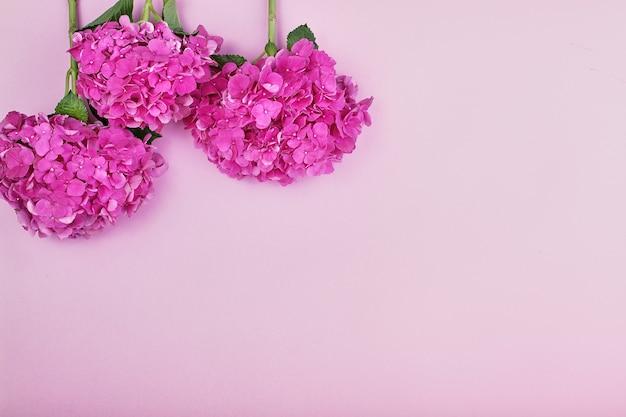 美しい花の背景と緑の葉、テクスチャ、壁紙