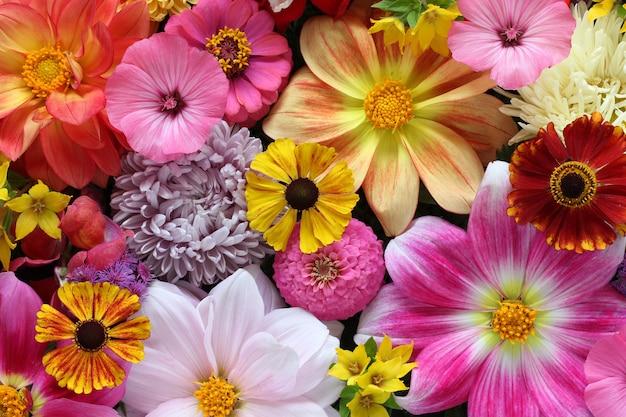 美しい花の背景、上面図。庭の花の花束。自然な背景。