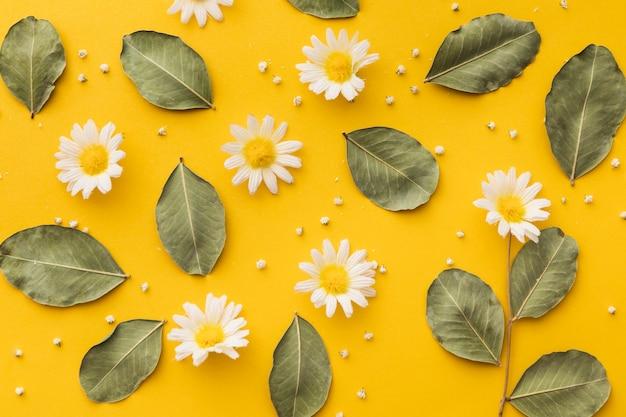 Beautiful floral concept arrangement