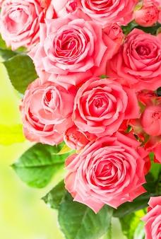 Красивая цветочная цветочная стена - букет розовых роз на стене