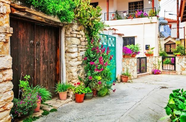 키프로스 섬의 traditioanl 마을의 아름다운 꽃 거리