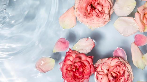 美しい花のバレンタインデーのコンセプト