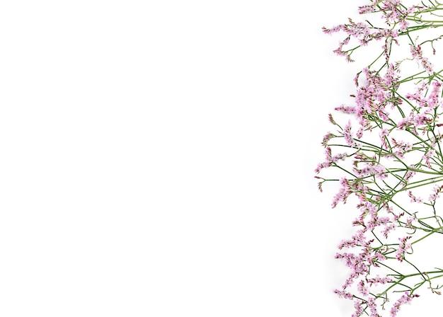 라든지 꽃의 아름 다운 꽃 배경입니다.
