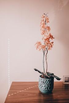 책상 위에 냄비에 아름다운 꽃