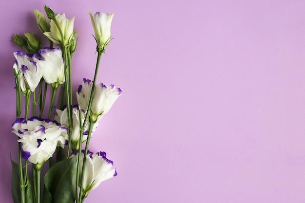 トルコギキョウ、トルコギキョウの美しい花。紫の背景