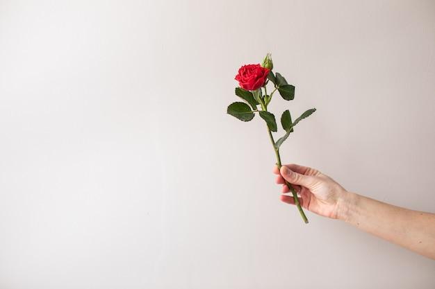 아름다운 꽃. 플로리스트의 작품. 꽃 배달.