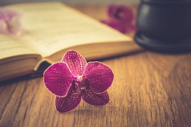 Beautiful flower with old book and cup of coffee or tea. romantic background with retro filter effect