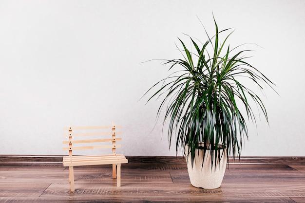 壁に美しい植木鉢