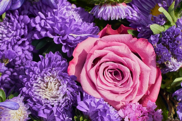 Beautiful flowers. aster flowers and pink rose. top view