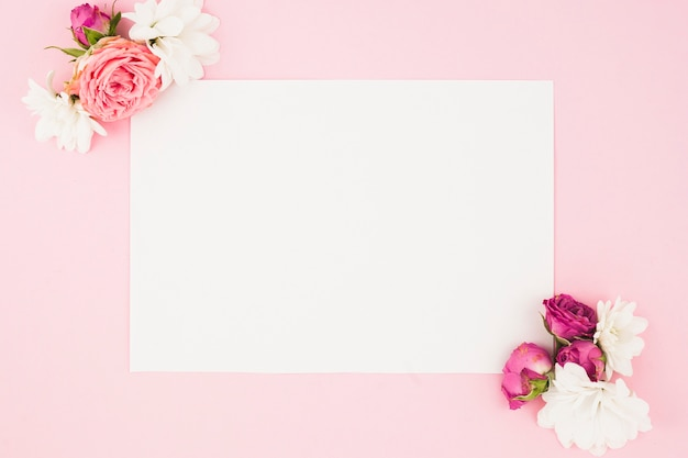 Beautiful flowers on the corner of white paper against pink background