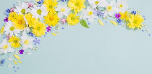 Красивые цветы на фоне голубой бумаги