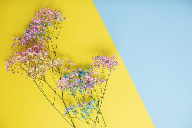 コピースペースと色とりどりの紙の背景に美しい花。