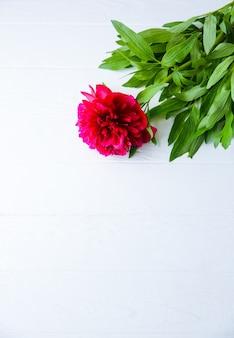 白い背景の上の美しい花。牡丹の花束。完璧なフラットレイ。幸せな母親の休日のはがき。国際女性の日の挨拶。広告やプロモーションのための誕生日のアイデア。