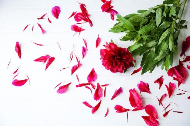 白い背景の上の美しい花。牡丹の花束。花びらが付いた完璧なフラットレイ。幸せな母親の休日のはがき。国際女性の日の挨拶。広告やプロモーションのための誕生日のアイデア。
