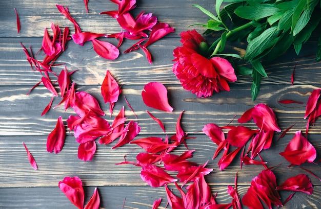 나무 배경에 아름 다운 꽃입니다. 모란 꽃다발. 꽃잎이 있는 완벽한 플랫 레이. 해피 어머니의 휴일 엽서입니다. 국제 여성의 날 인사말. 광고 또는 판촉을 위한 세련된 아이디어.