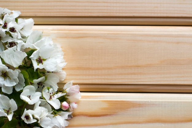 Beautiful flowers on wooden surface