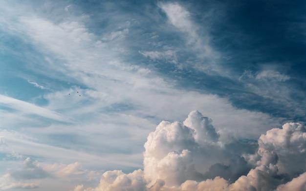 青い空、天国の風の強い風景を背景に美しいふわふわの雲と小鳥。自然な背景。