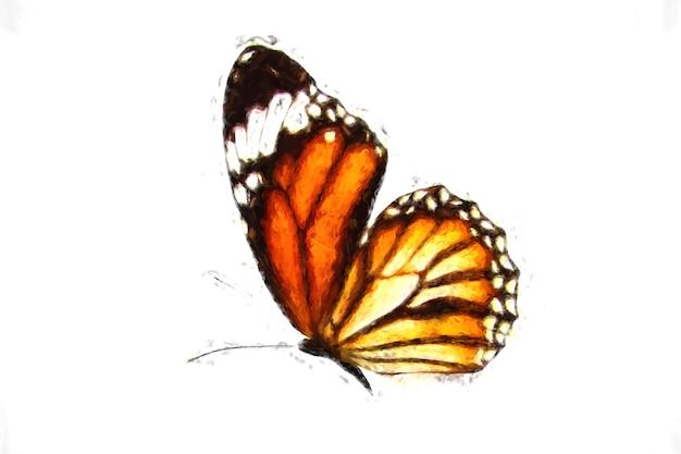 白い背景で隔離の美しい空飛ぶオレンジ色の蝶