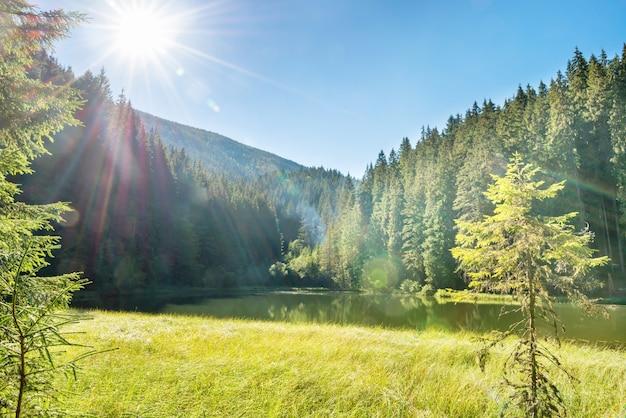 푸른 물, 아침 햇살, 빛나는 태양이 있는 산속의 아름다운 숲 호수