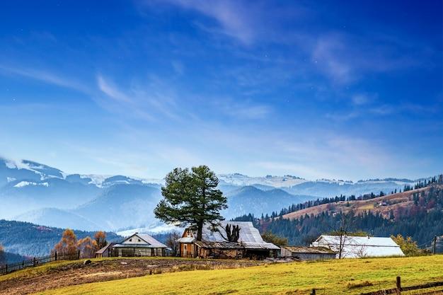 カルパティア山脈と小さな村を覆う美しい森