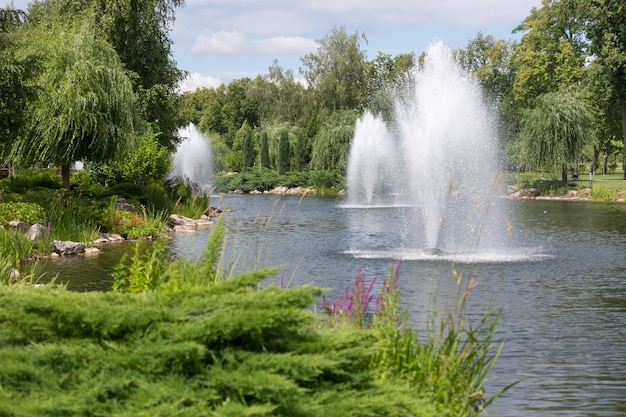 Beautiful fountains on pond at park at bright sunny day