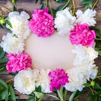 Красивая рамка из белых и розовых пионов на деревянном деревенском стиле